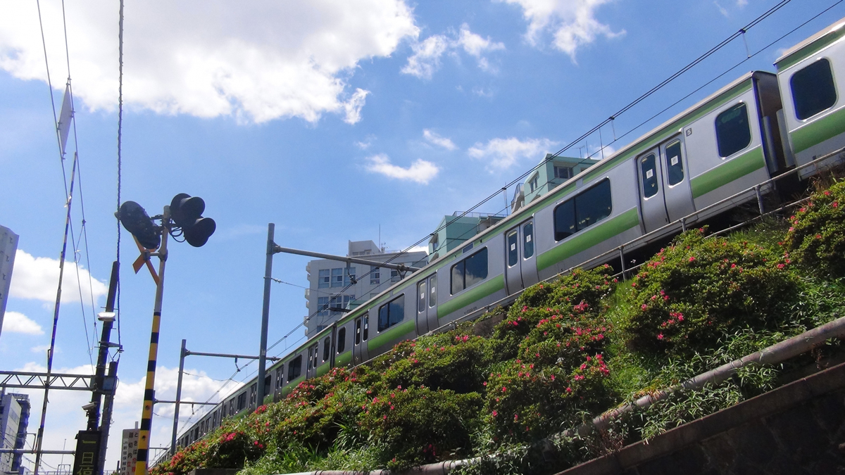Where can you use Suica?