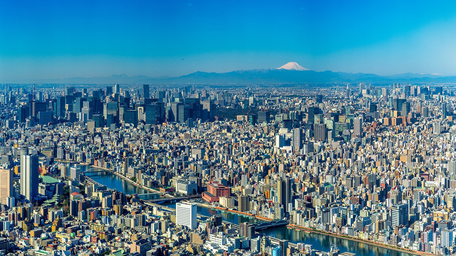 Tokyo, seen from above.