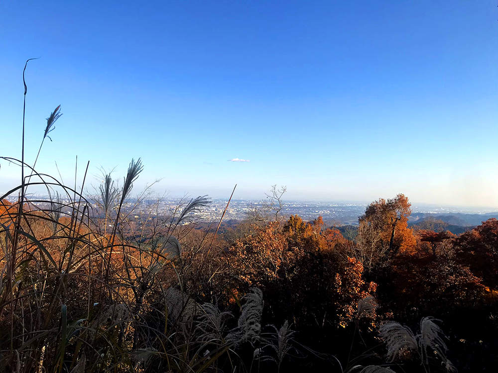View from the Mt Takao summit.